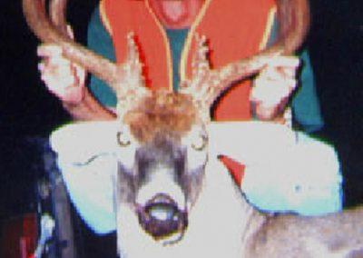 age-your-deer-2