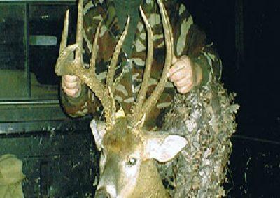 age-your-deer-6